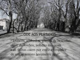 Odes de Jorge de Sena