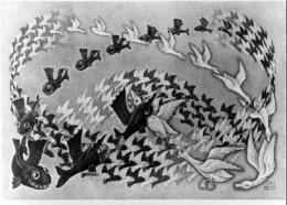 História do Peixe-pato